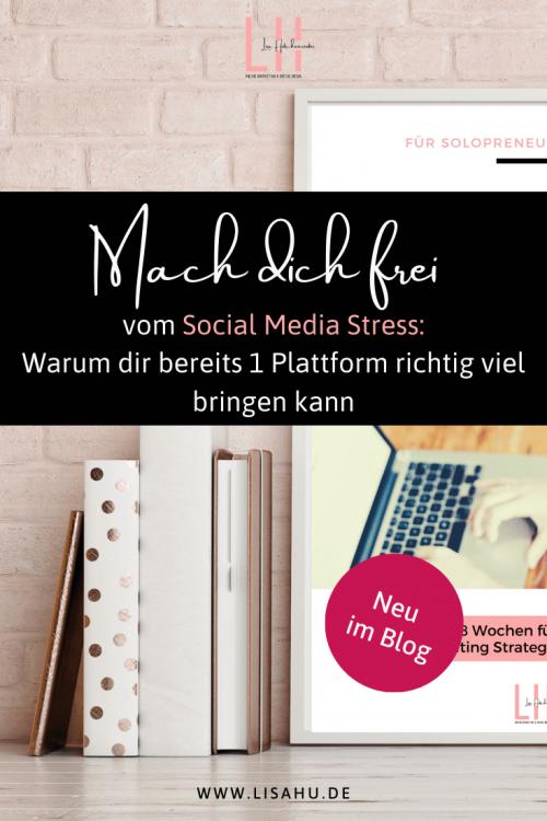 Online Marketing Social Media aktiv Online Unternehmerin Virtuelle Assistentin online arbeiten (2)